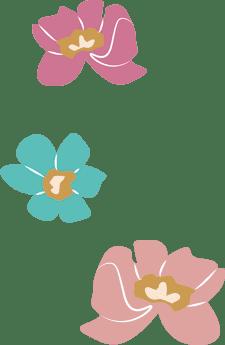Blumen Geburtstag